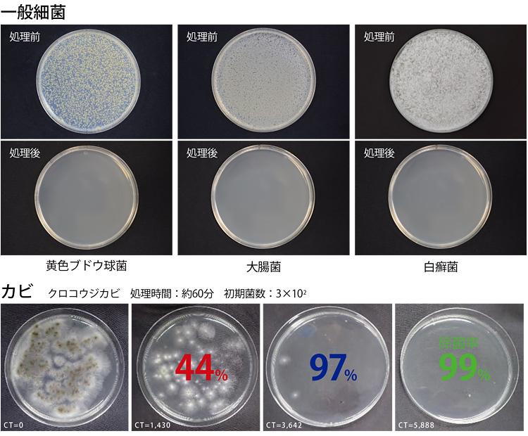 衛生微生物研究センターの 除菌試験試験検査報告書より抜粋 処理条件:4000CT
